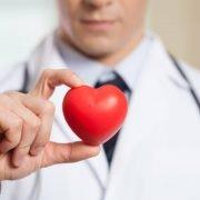 Médico com estetoscópio vermelho nos ombros segurando um coração de plástico